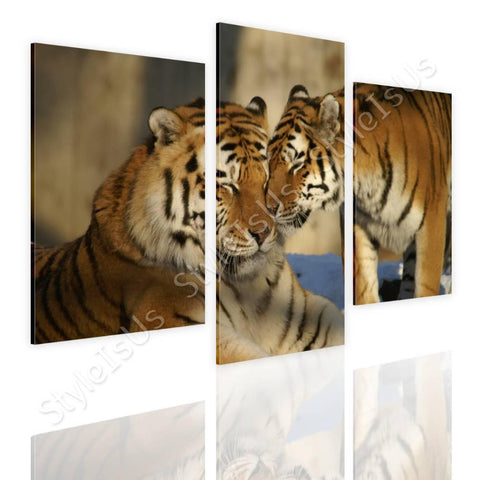 Split 3 panels Tigers in the wild 3 Panels | Canvas, Posters, Prints & Stickers - StyleIsUS.com