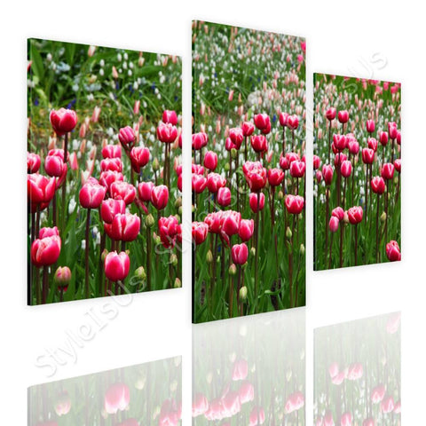 Split 3 panels Tulips 3 Panels | Canvas, Posters, Prints & Stickers - StyleIsUS.com