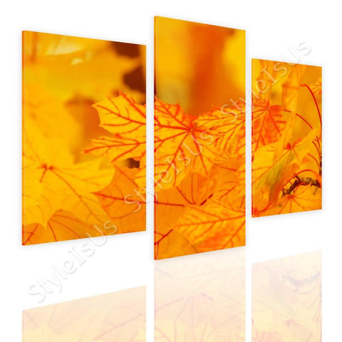 Split 3 panels Autumns Leaves 3 Panels | Canvas, Posters, Prints & Stickers - StyleIsUS.com
