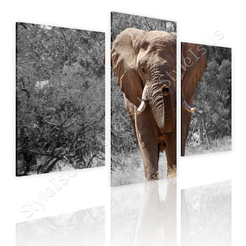 Split 3 panels African Elephant 3 Panels | Canvas, Posters, Prints & Stickers - StyleIsUS.com