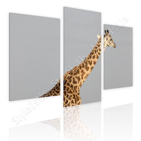 Split 3 panels Africas Giraffe 3 Panels | Canvas, Posters, Prints & Stickers - StyleIsUS.com