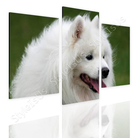 Split 3 panels Samoyed Furry Dog 3 Panels | Canvas, Posters, Prints & Stickers - StyleIsUS.com
