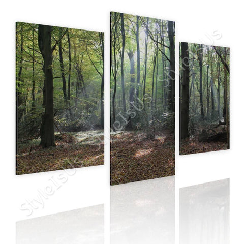 Split 3 panels Trees in the Woods 3 Panels | Canvas, Posters, Prints & Stickers - StyleIsUS.com