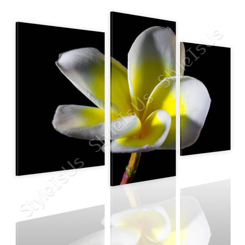 Split 3 panels White and Yellow Flower 3 Panels | Canvas, Posters, Prints & Stickers - StyleIsUS.com
