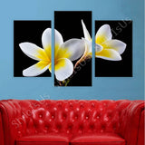 Split 3 panels White Plumeria Flowers 3 Panels | Canvas, Posters, Prints & Stickers - StyleIsUS.com