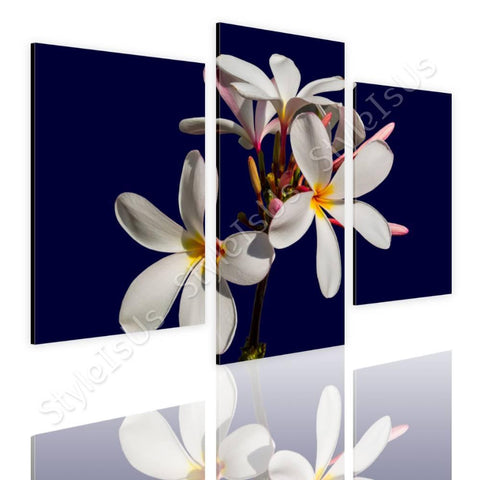Split 3 panels Blossom of a Flower 3 Panels | Canvas, Posters, Prints & Stickers - StyleIsUS.com
