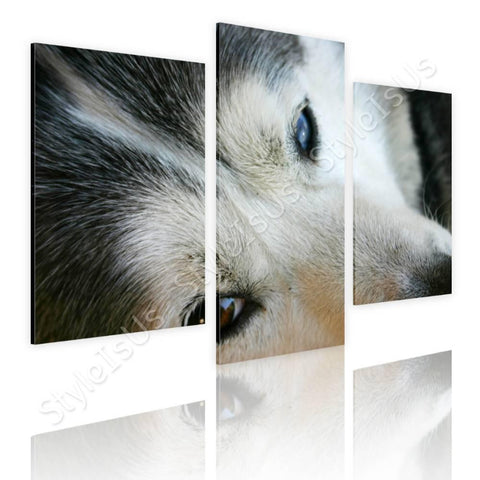 Split 3 panels Husky Dog 3 Panels | Canvas, Posters, Prints & Stickers - StyleIsUS.com