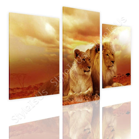 Split 3 panels Safari Lions in sunset 3 Panels | Canvas, Posters, Prints & Stickers - StyleIsUS.com