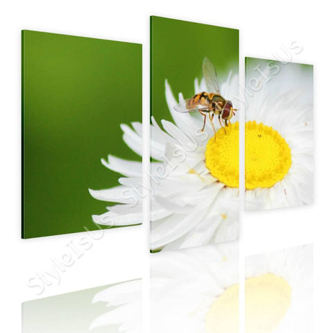 Split 3 panels White daisy with insect 3 Panels | Canvas, Posters, Prints & Stickers - StyleIsUS.com