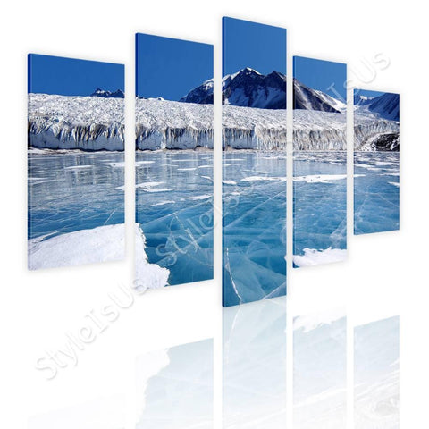 Split 5 panels Antarctica 5 Panels | Canvas, Posters, Prints & Stickers - StyleIsUS.com