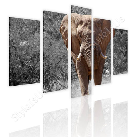 Split 5 panels African Elephant 5 Panels | Canvas, Posters, Prints & Stickers - StyleIsUS.com