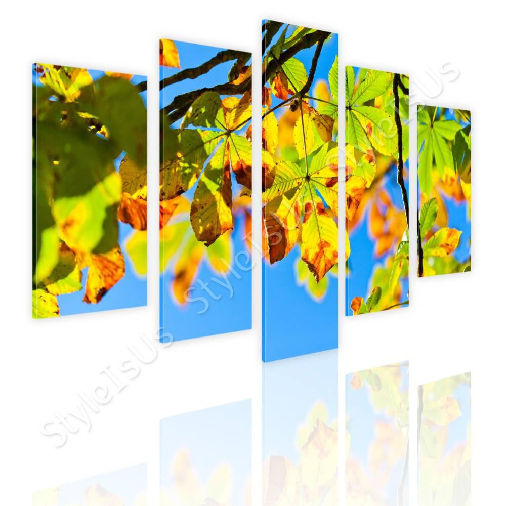 Split 5 panels Horse Chestnut Tree 5 Panels | Canvas, Posters ...