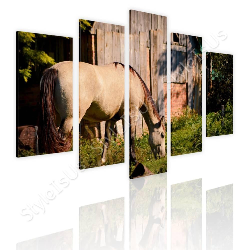 Split 5 panels Horse Grazing Farm 5 Panels | Canvas, Posters, Prints & Stickers - StyleIsUS.com