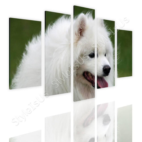 Split 5 panels Samoyed Furry Dog 5 Panels | Canvas, Posters, Prints & Stickers - StyleIsUS.com