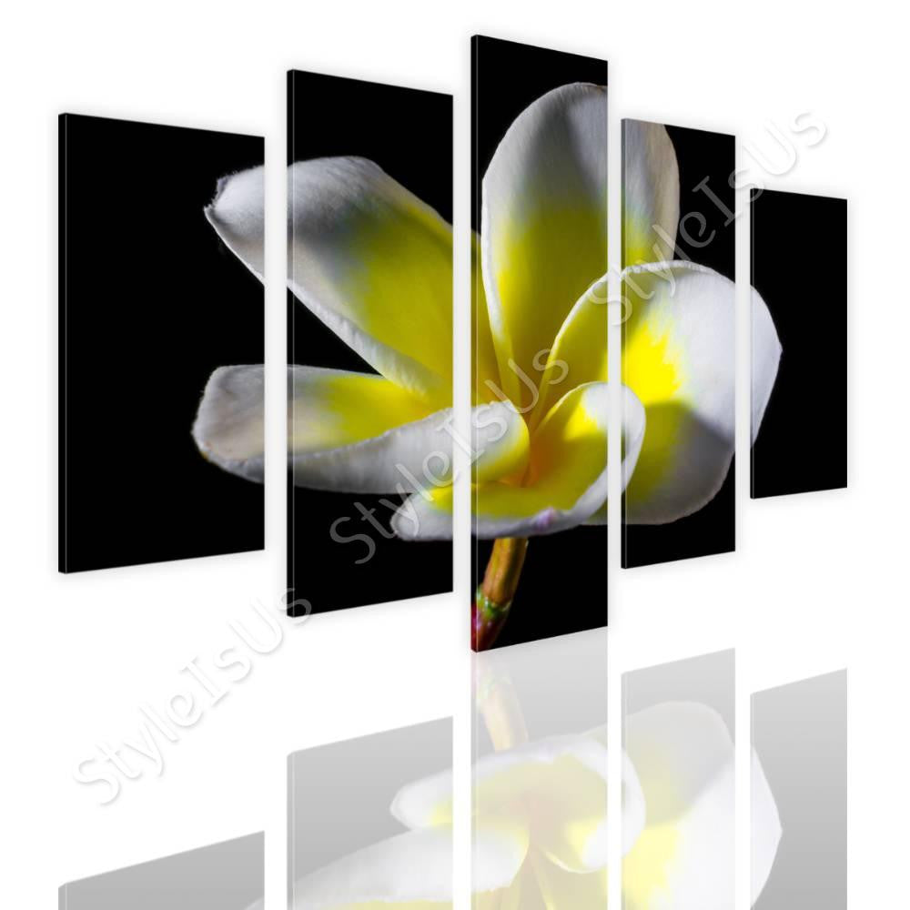 Split 5 panels White and Yellow Flower 5 Panels | Canvas, Posters, Prints & Stickers - StyleIsUS.com