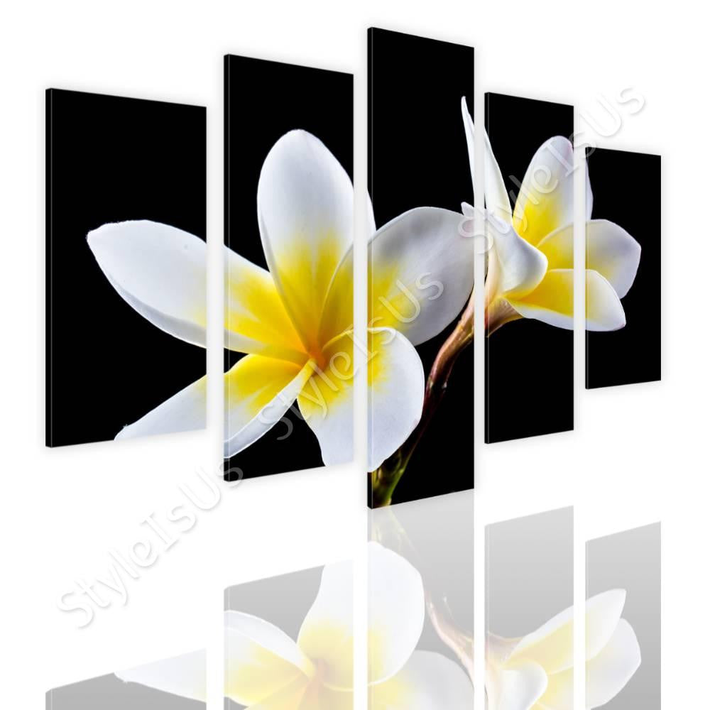 Split 5 panels White Plumeria Flowers 5 Panels | Canvas, Posters, Prints & Stickers - StyleIsUS.com