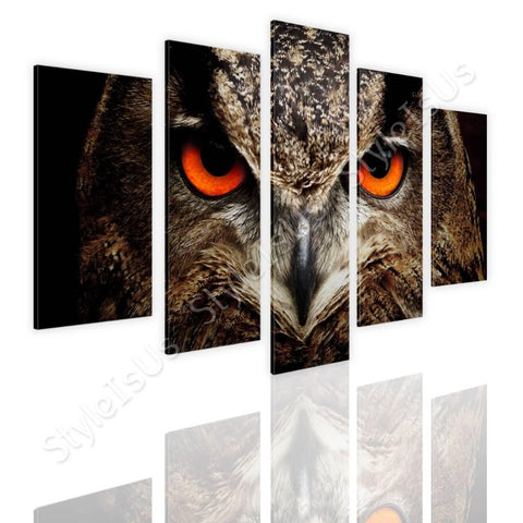 Split 5 panels Eagle Owl Eyes 5 Panels | Canvas, Posters, Prints & Stickers - StyleIsUS.com
