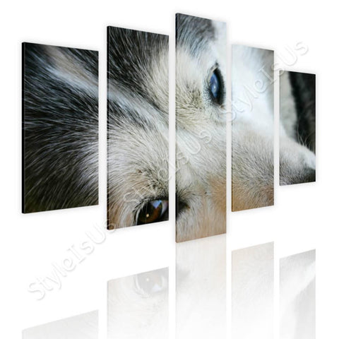 Split 5 panels Husky Dog 5 Panels | Canvas, Posters, Prints & Stickers - StyleIsUS.com