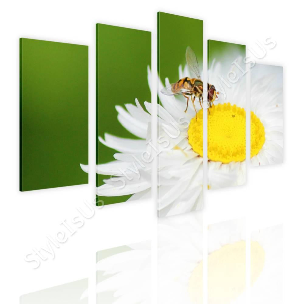 Split 5 panels White daisy with insect 5 Panels | Canvas, Posters, Prints & Stickers - StyleIsUS.com