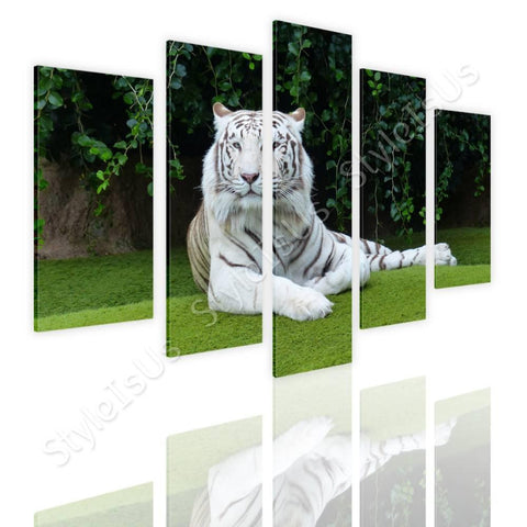 Split 5 panels White tiger resting 5 Panels | Canvas, Posters, Prints & Stickers - StyleIsUS.com