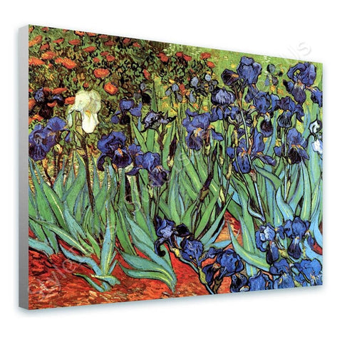 Vincent van Gogh Irises | Canvas, Posters, Prints & Stickers - StyleIsUS.com
