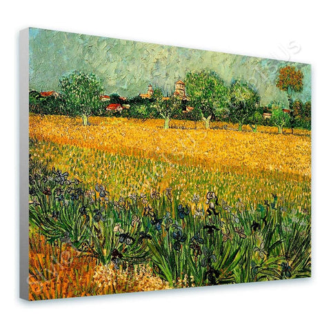 Vincent van Gogh Arles With Irises | Canvas, Posters, Prints & Stickers - StyleIsUS.com