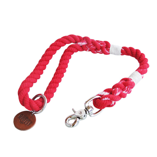 Ombré Traffic Leash - Scarlet Red