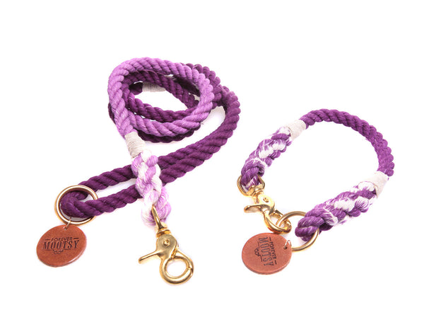 Purple Ombré Dog Collar