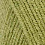 Plymouth Encore Worsted Yarn in the color Green Gremlin 451