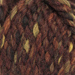 Plymouth Encore Mega Colorspun Yarn in the color Browns 7155