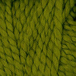Plymouth Encore Mega Yarn in the color 0462