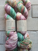 Emma's Yarn Practically Perfect Sock in the color Farmers Market