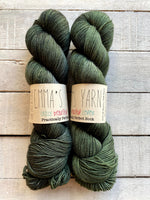 Emma's Yarn Practically Perfect Sock in the color Kale
