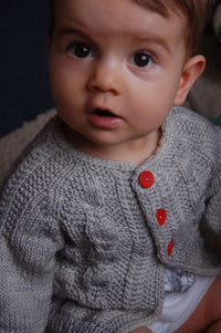 Silverfox Cardigan pattern by Frogginette