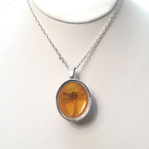 Dragonfly in Amber Necklace