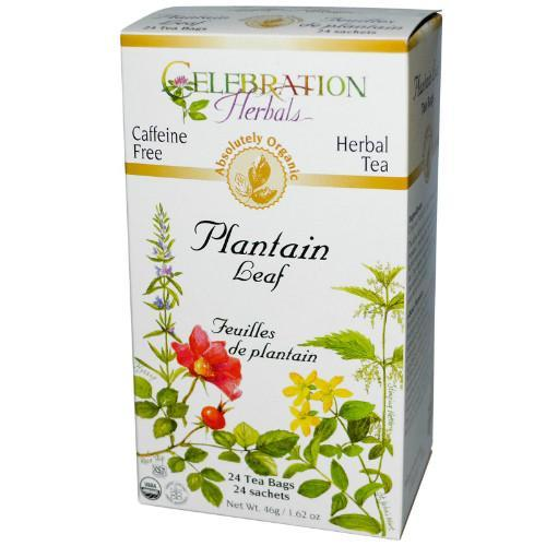 Celebration Herbals Organic Plantain Leaf Tea - 24 Tea Bags - 1.48 oz