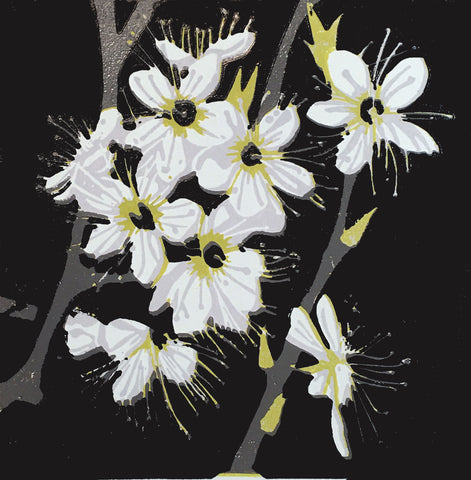 Blackthorn Blossom Mini