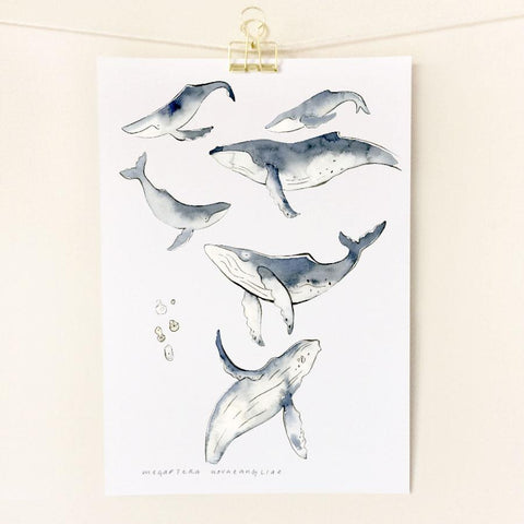 Prints by Little Sister Co