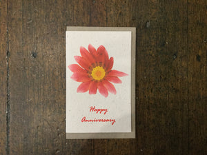 Planet Go Round - Happy Anniversary Flower Seed Card - last minute gift idea - melbourne