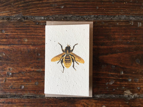 Planet Go Round Bee Seed Card -Cards Melbourne