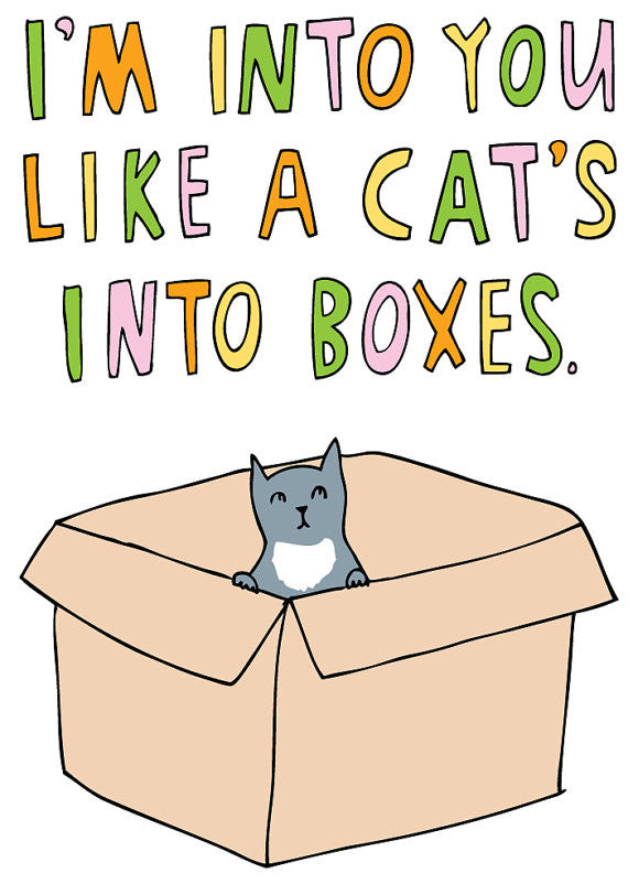 Able and Game I'm into you like a cat's into boxes -Cards