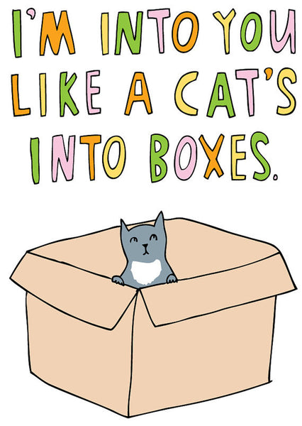 I'm into you like a cat's into boxes