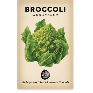 BROCCOLI ROMANESCO HEIRLOOM SEEDS - Pookipoiga