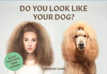 Hardie Grant Books Do You Look Like Your Dog? Match Dogs with their Humans: A Memory Game -Book Melbourne