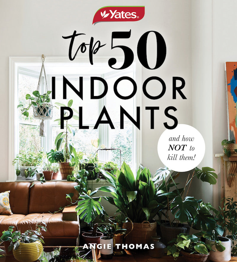 Hardie Grant Books - 50 Indoor Plants & How Not to Kill Them Book - last minute gift idea - melbourne