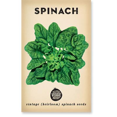 Little Veggie Patch Co SPINACH 'BLOOMSDALE' HEIRLOOM SEEDS -Seeds