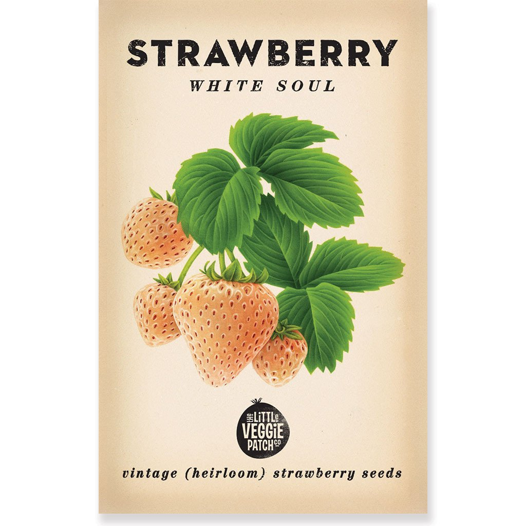 "STRAWBERRY ""WHITE SOUL"" HEIRLOOM SEEDS - Pookipoiga"