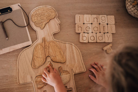 Wooden Anatomy Puzzle (PRE ORDER END MARCH) - The Little Interior