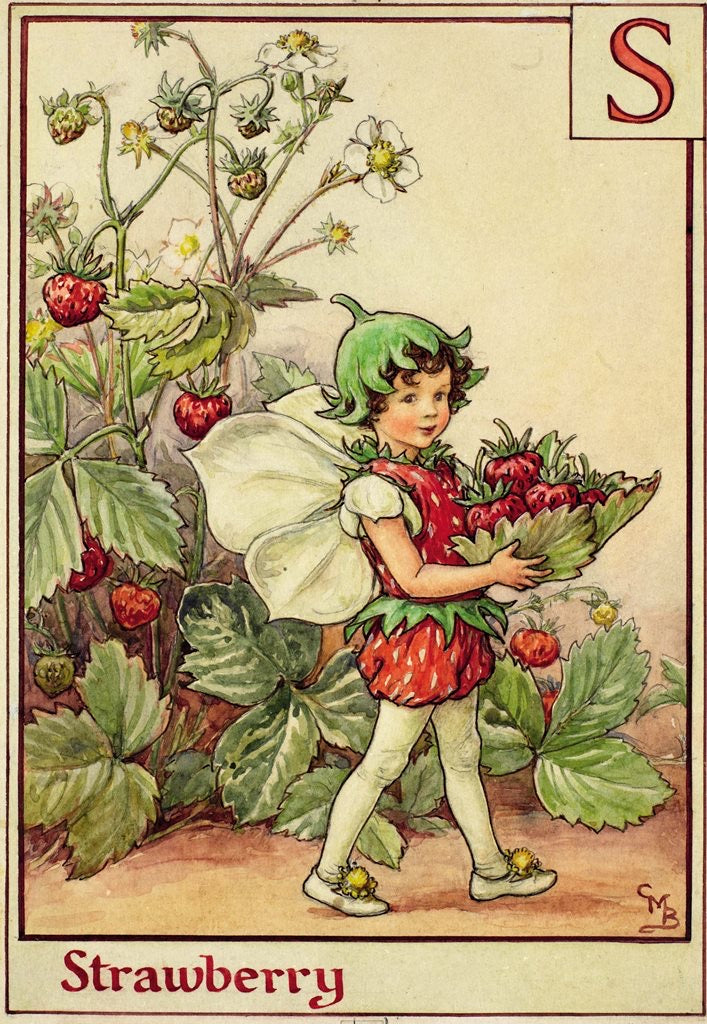 Flower Fairy Basket Tin - The Strawberry Fairy