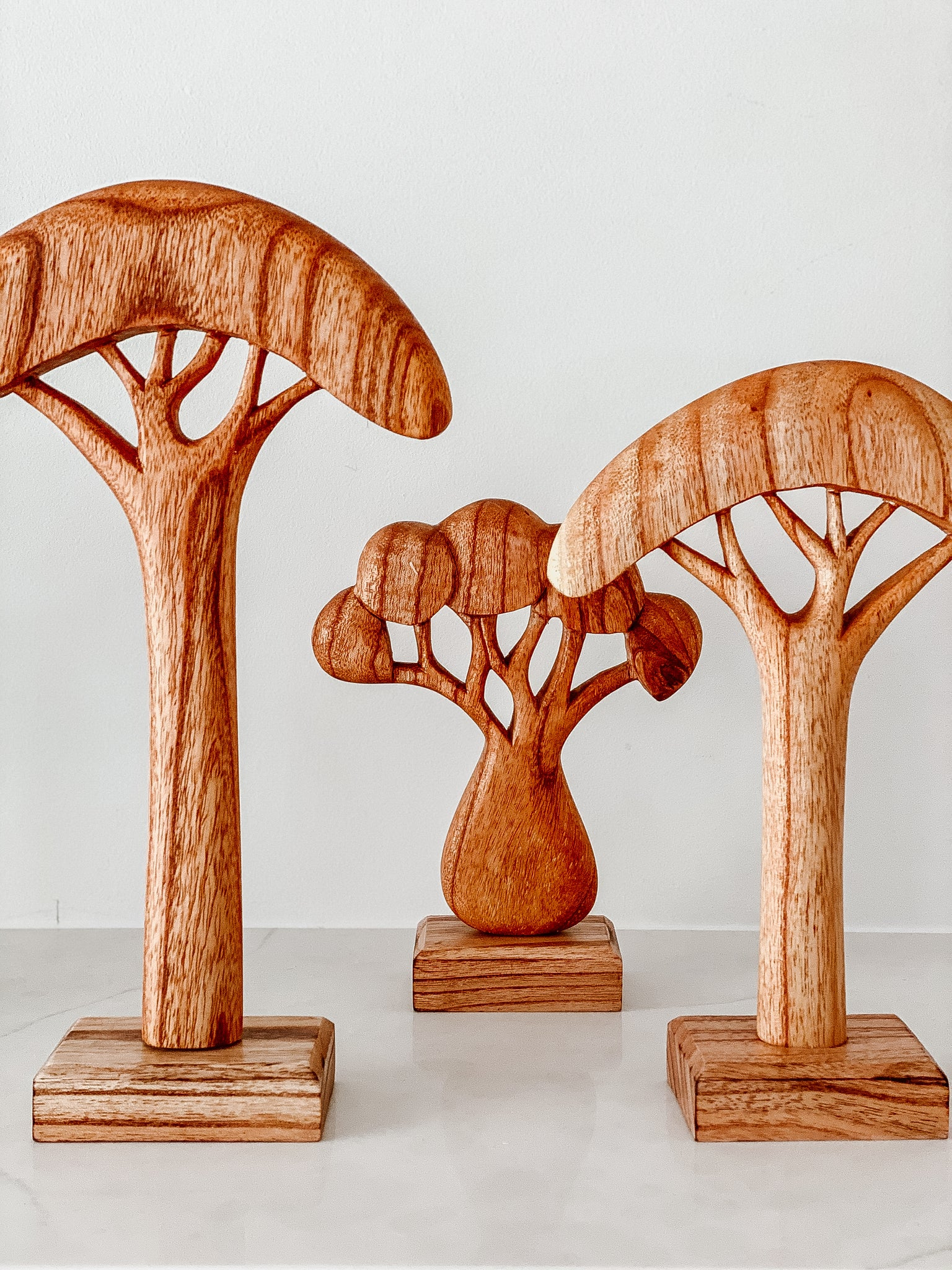 African Trees - Natural